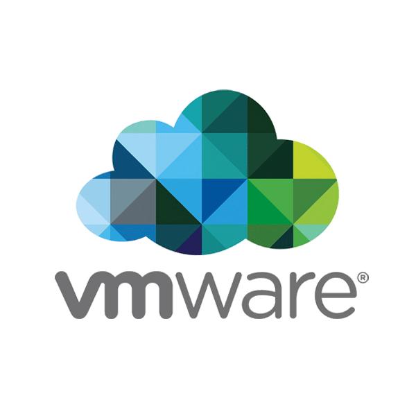 VMware 數據復原